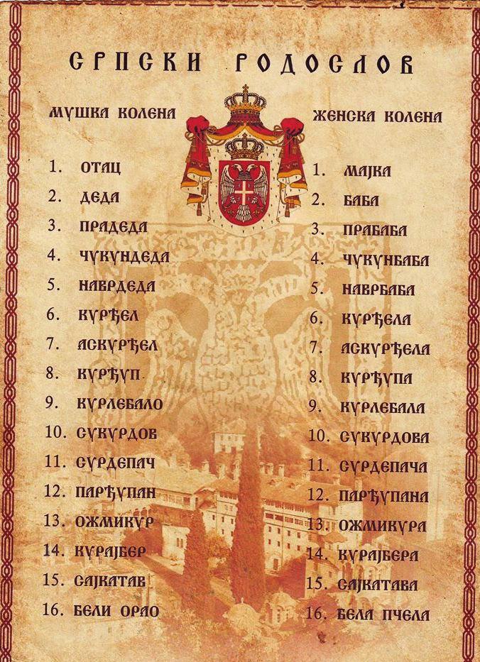 srpski-rodoslov