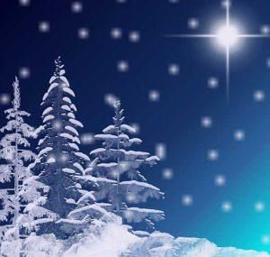 novogodisnja-cestitka-duska-radovica