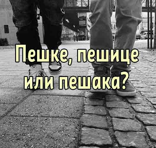 Idemo peške, pešice ili pešaka?