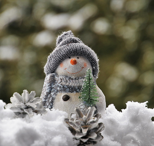 Sneško ili sneško