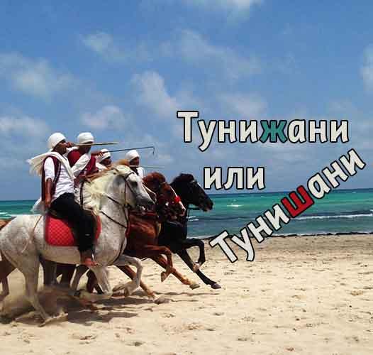 Тунижани или Тунишани