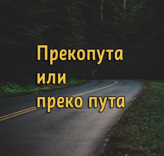 Прекопута или преко пута