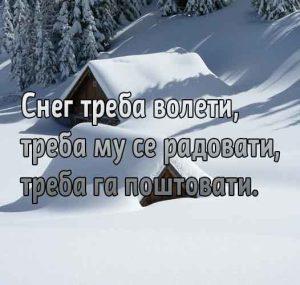 sneg-dusko-radovic