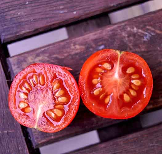 Paradajz ili paradajs