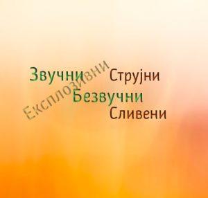 podela-suglasnika