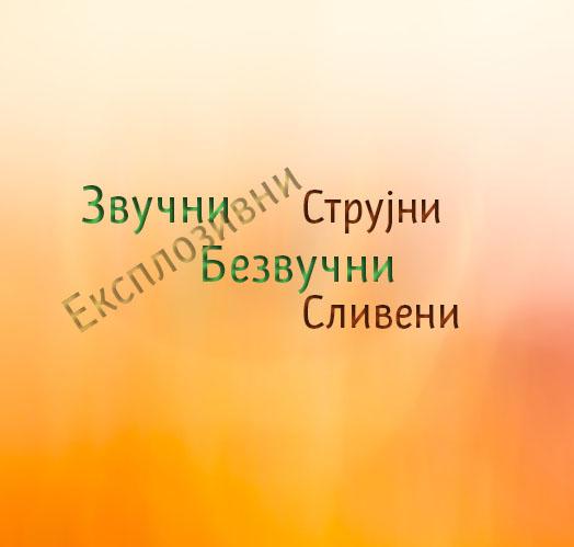 Podela suglasnika u srpskom jeziku