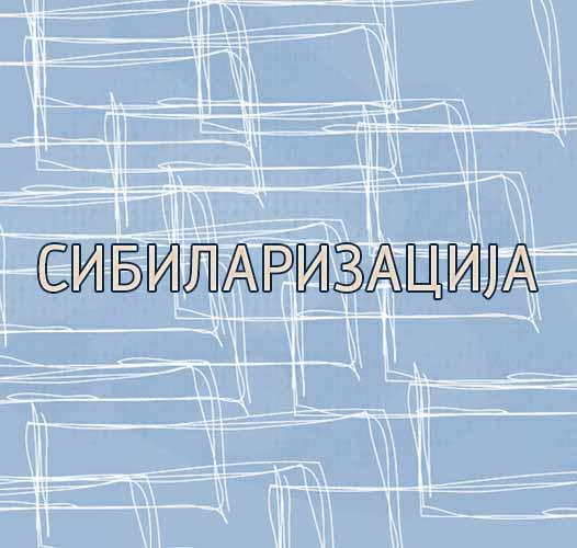 Sibilarizacija (druga palatalizacija)
